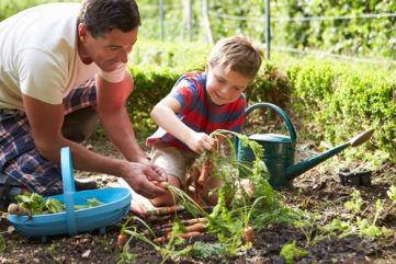 6 tips for a thriving non-toxic garden
