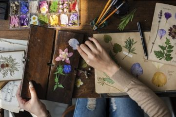 DIY Ideas: pressing flowers